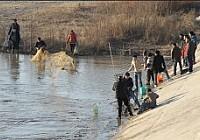 因地铁施工西安灞河开闸放水百人争抢捕鱼