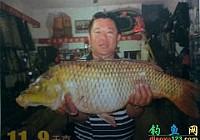 釣魚王餌料圓我大魚夢24斤大鯉魚