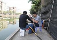 12米長槍戰魚塘收獲鯽鯉47斤多