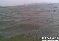 大风大浪好钓鱼水库爆钓