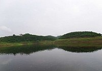 雨中垂釣長壽湖釣獲稀有魚種