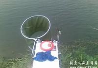 水库台钓翘嘴鱼意外钓获黄颡和黑鱼
