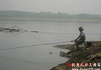 雨前雨后爽钓鸭河水库满载而归