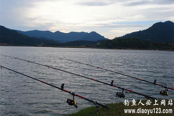 升钟湖钓鱼