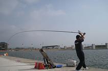 鱼饵的配制方法和使用技巧