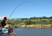 湖库垂钓大个体鱼类的四个技巧