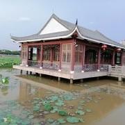 周末钓东江,切线跑鱼,大雨来相伴