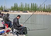 怀仁县鹅毛河湿地公园成为钓鱼好去处
