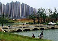 合肥滨湖塘西河每天钓鱼爱好者络绎不绝