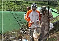 水库使用翻板钩钓法钓获鲶鱼鲢鱼鲫鱼各一条
