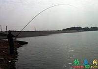 安徽巢湖钓友在水库用5.4米矶竿钓获80斤大青鱼