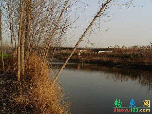 徐州新河钓点