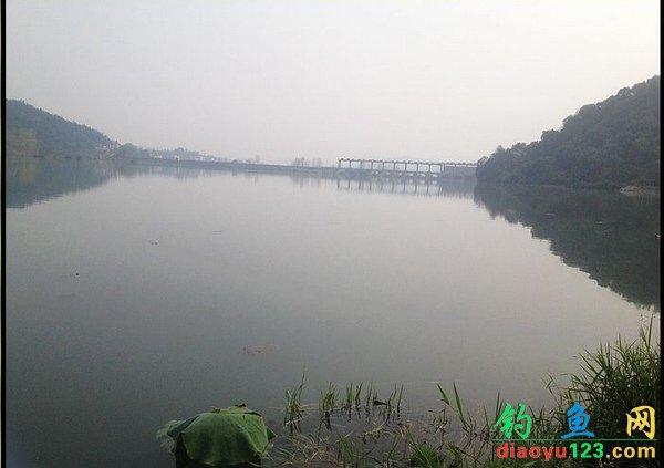 小清河钓鲫鱼